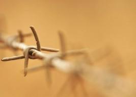 Ataques ao auxílio-reclusão